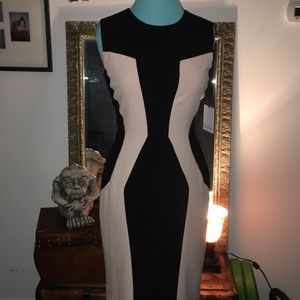Ck blush & black contour dress sz 2